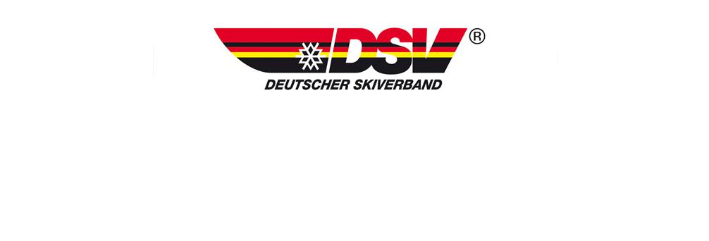 dsv-logo3